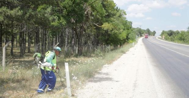 Odunpazarı'nda yol kenarları ve mesire alanları temizleniyor