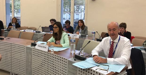 Günay, nükleer güvenlik raporunu komisyona sundu