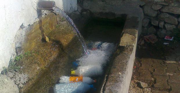 Sütler bozulmasın diye soğuk suyun içinde tutuluyor