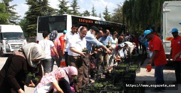 On binlerce çiçek vatandaşlara dağıtıldı