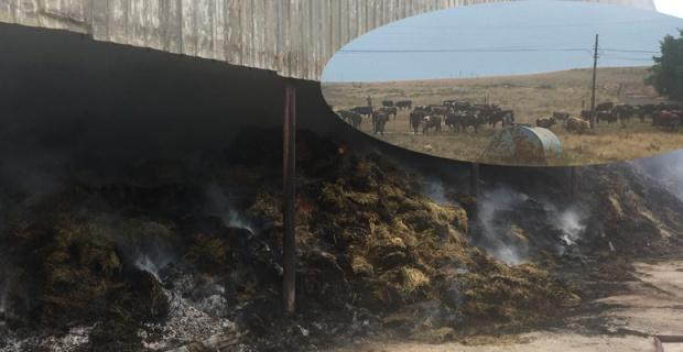 Çiftlikte çıkan yangın panik yarattı