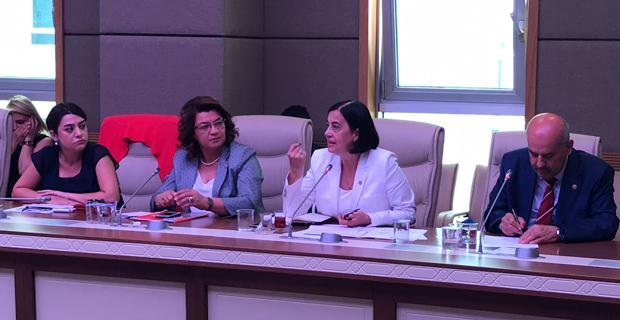 Cinsiyet Eşitliği ihlallerine karşı komisyon önerisi