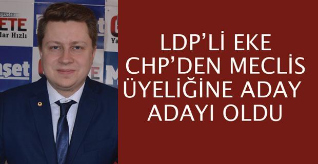 LDP'nin oyu seçimde belirleyici bile olabilir