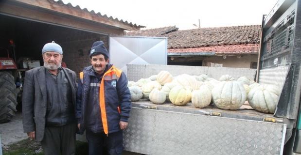 Ürettiği 1,5 ton bal kabağını aşevine bağışladı