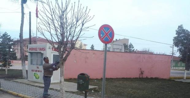 İnönü'de ağaçlar budanmaya başlandı