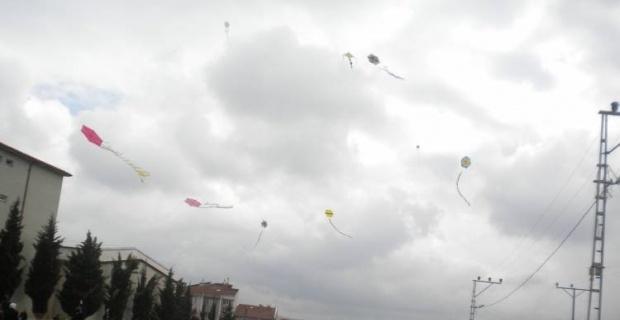 Uçurtmalar sokak hayvanları için uçtu