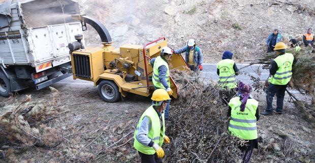 Orman atıkları gübreye dönüştürülüyor
