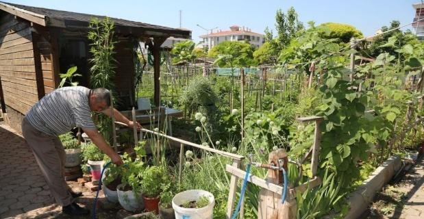 Hobi bahçeleri kapatıldı