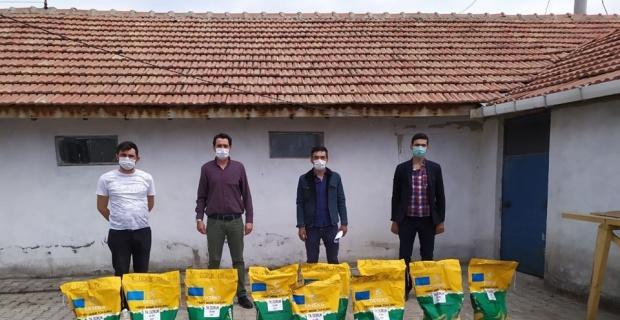 Aslanapa'da ''Danelik mısır tohumu'' dağıtıldı