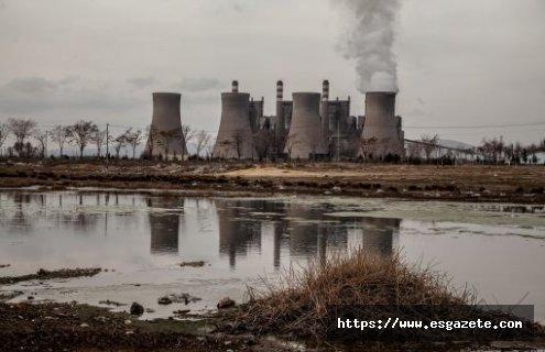 Termik santral yapımına Danıştay'dan iptal