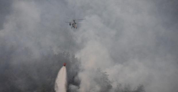 Alev alan otomobil orman yangınına sebep oldu