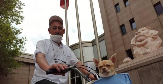 Bisikletle gezmeyi seven minik köpek