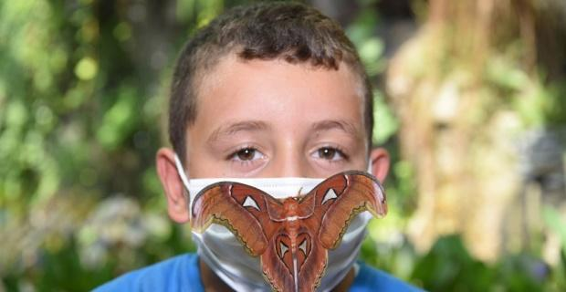 Dünyanın en büyük kelebeği