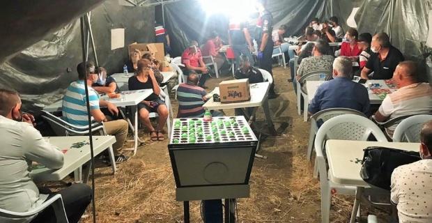 Tarlanın ortasına çadır kurup kumar oynadılar