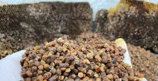 Vitamin deposu 'arı ekmeği' üretimi başladı