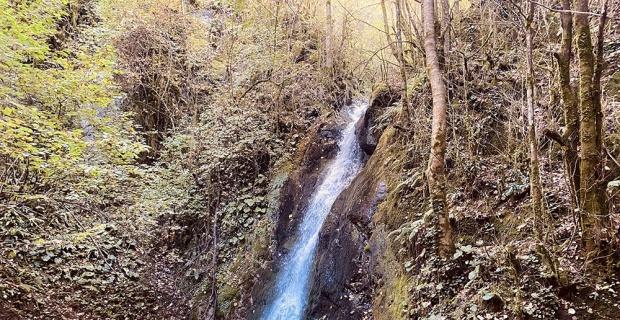 Ormanın içindeki gizli Cennet