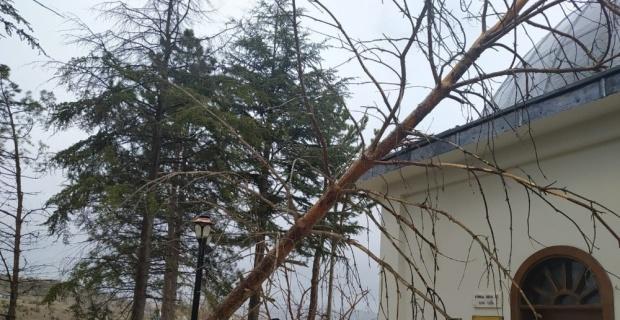 Bozüyük'te fırtına hasara yol açtı