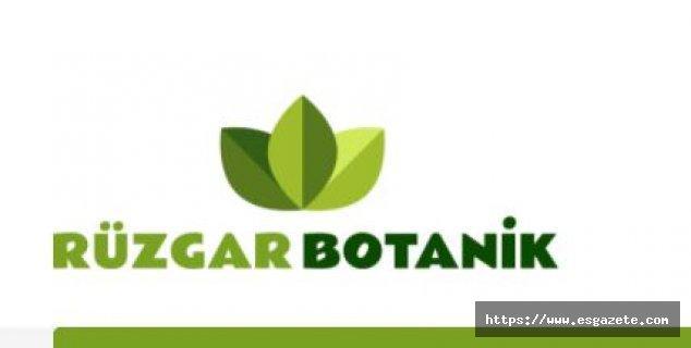 Zeytin Fidanı Fiyatları ve Çeşitleri için www.ruzgarbotanik.com