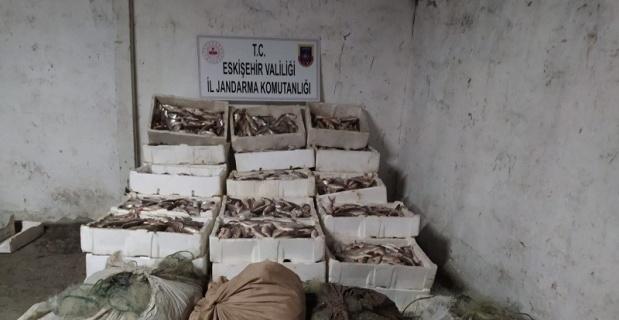Kaçak balık avcılarına ceza