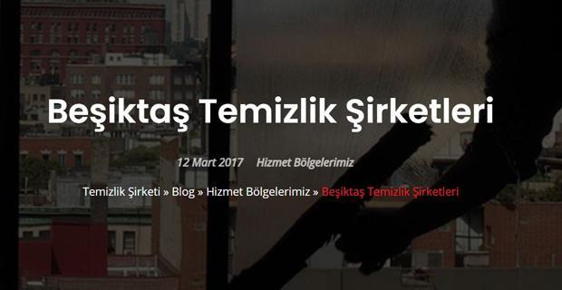 Beşiktaş Temizlik Şirketleri