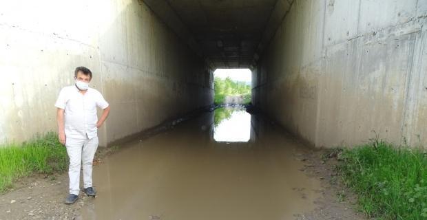 Bu da köprü altı havuzu