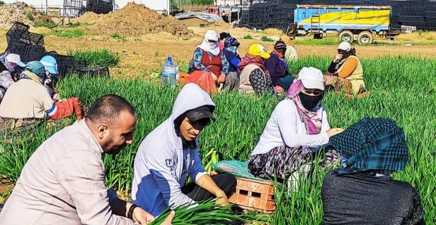 Gelecek Partisi'nden çiftçilere ziyaret