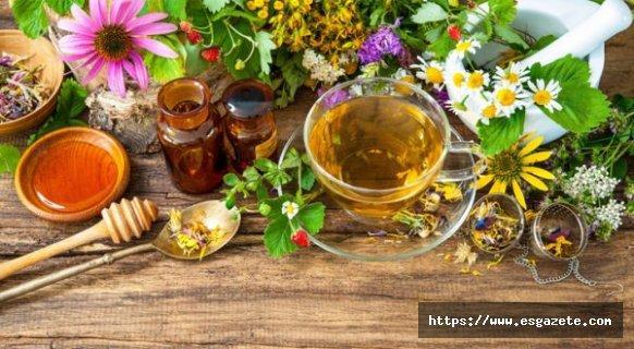 Yaz Aylarında Tüketilmesi Gereken Bitkisel Çaylar