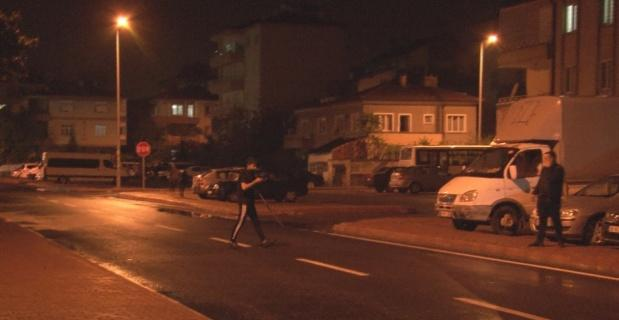 Başıboş 'camız' vatandaşlara ve ekiplere zor anlar yaşattı