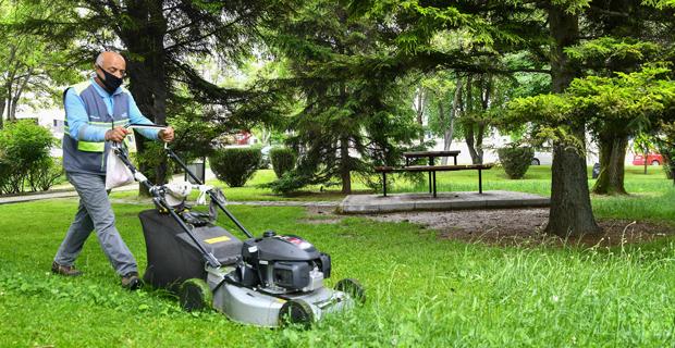 Parklarda çim biçme çalışması sürüyor
