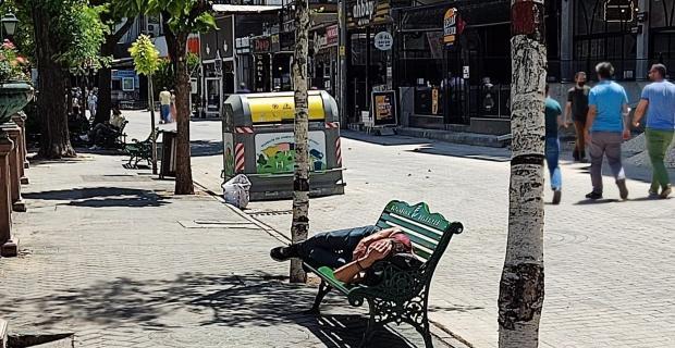 Kavurucu sıcak altında böyle uyudu