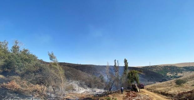 Yangın 300 hektarlık alanı kül etti