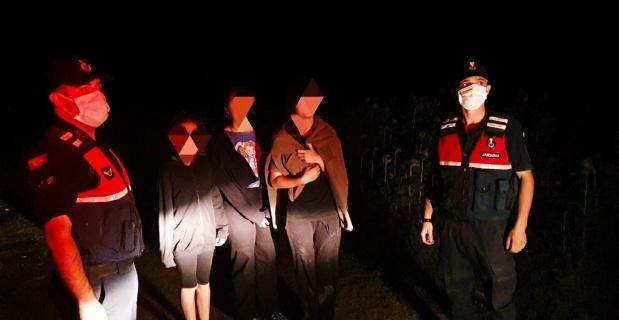 Kaybolan 3 çocuk mısır tarlasında bulundu