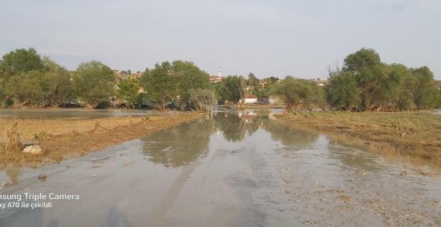 Sivrihisar'da sel hayvanları ve tarlaları vurdu