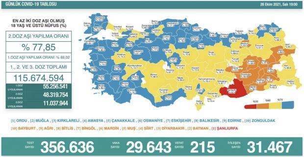Korona virüsten 215 kişi hayatını kaybetti