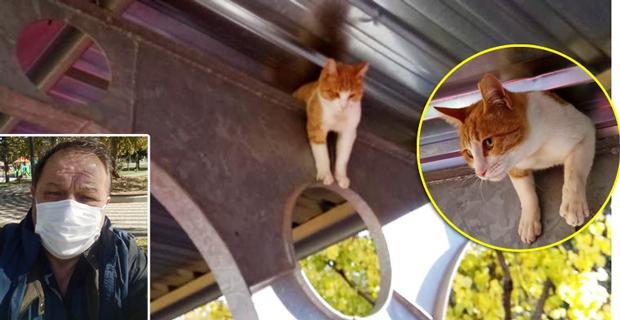 Yardım çığlıkları atan kediyi o kurtardı