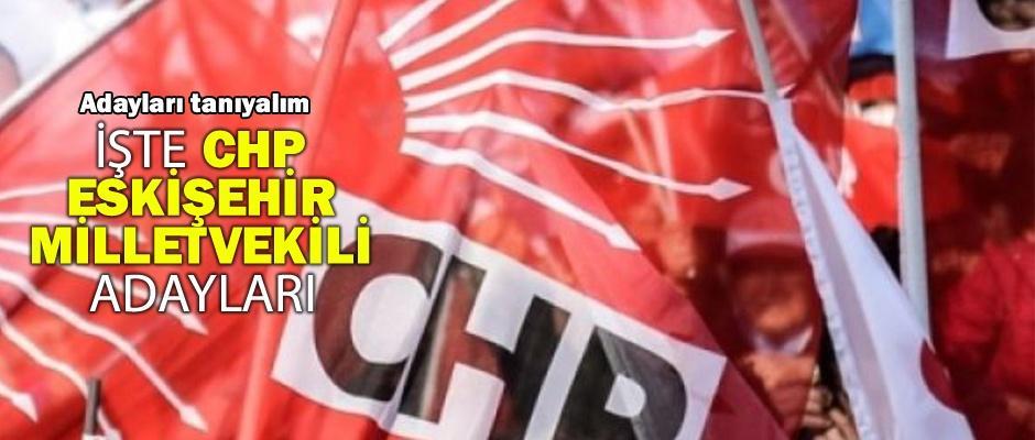 CHP Eskişehir Milletvekili adaylarını tanıyalım