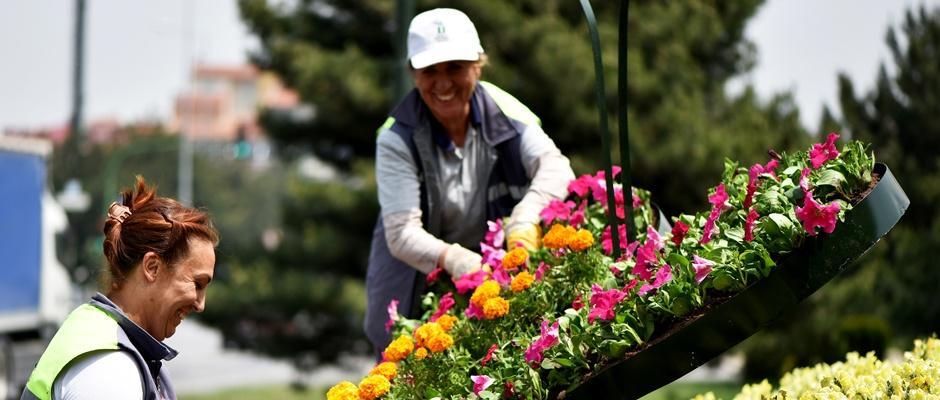 Tepebaşı çiçek açıyor