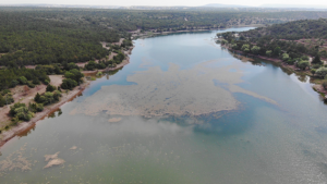 Haziran yağmurları Musaözü Göleti'ni canlandırdı