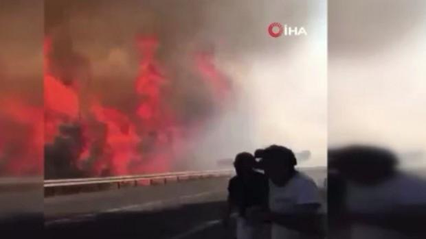 Patlayan kozalaklar saniyeler içinde yangını böyle büyüttü