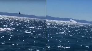 Helikopter denize çakıldı